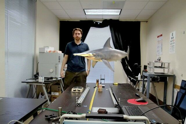 magic-leap-shark-640x426