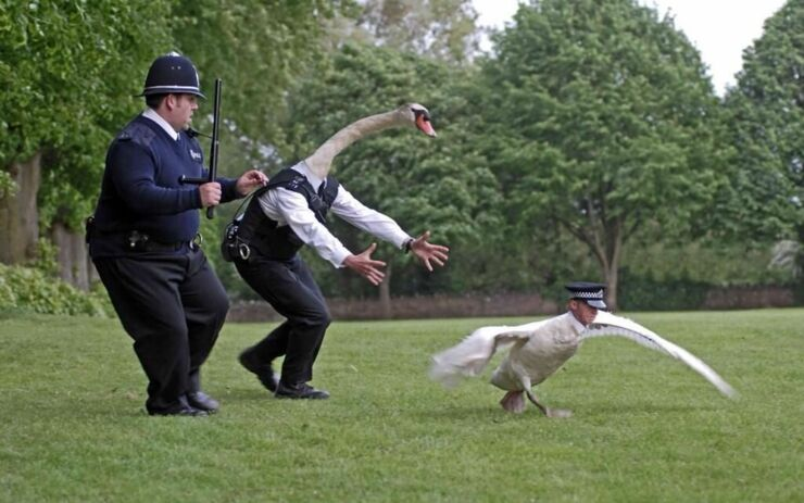 Simon-Pegg-Swan-Hot-Fuzz