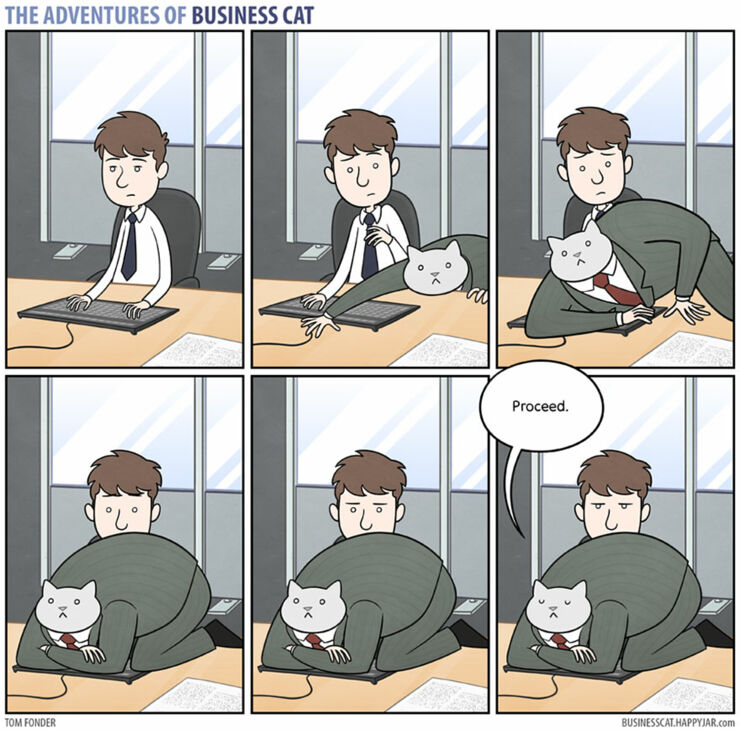 adventures-of-business-cat-comics-tom-fonder-16__880