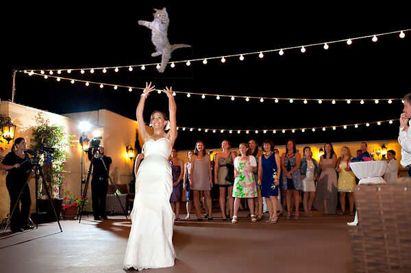 Brides-Throwing-Cats-02