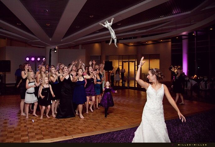 Brides-Throwing-Cats-04-685x470