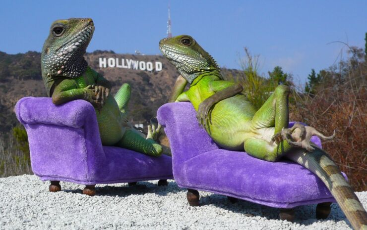 hollywood_lizards_by_henry_lizardlover_113_for_1280_web_