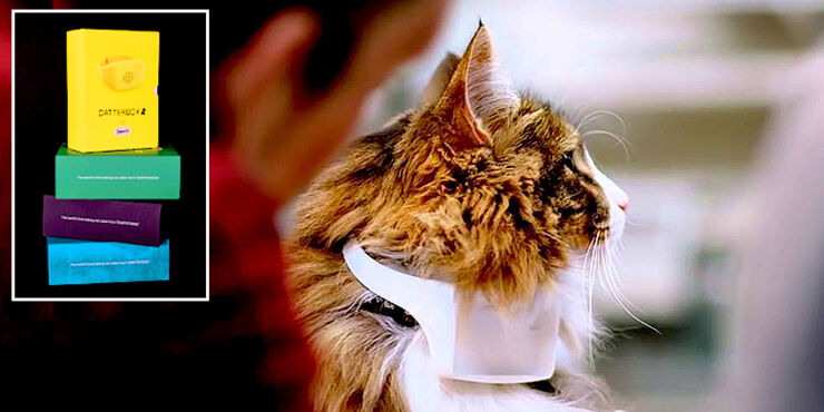 Talking-Cat-Collar-Gives-Your-Pet-A-Human-Voice