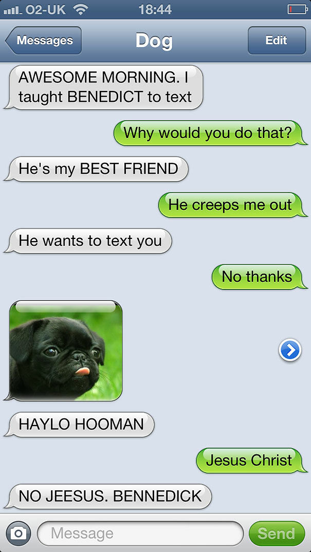 What Your Life Would Be Like If Dogs Could Text