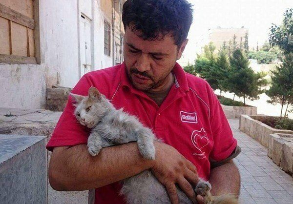 cat-man-of-aleppo-600x418