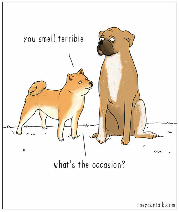 If Animals Could Talk - 13