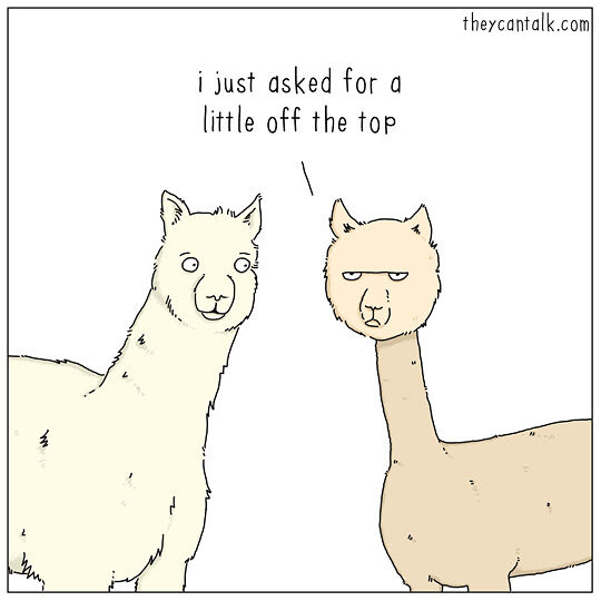 If-Animals-Could-Talk-35