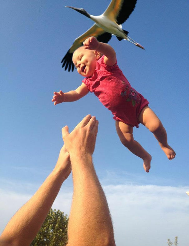 60 Amazing Photographs Captured At Just The Right Moment