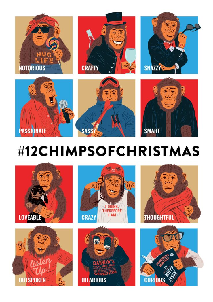 12 Chimps of Christmas_ Mugshot