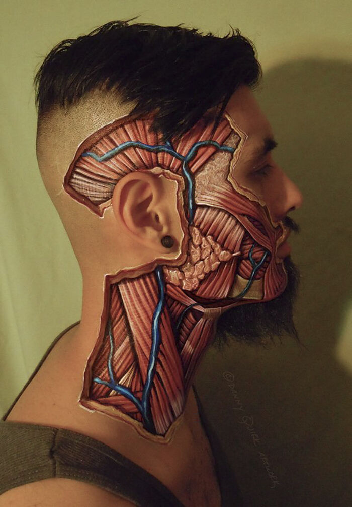 anatomy art - 14.
