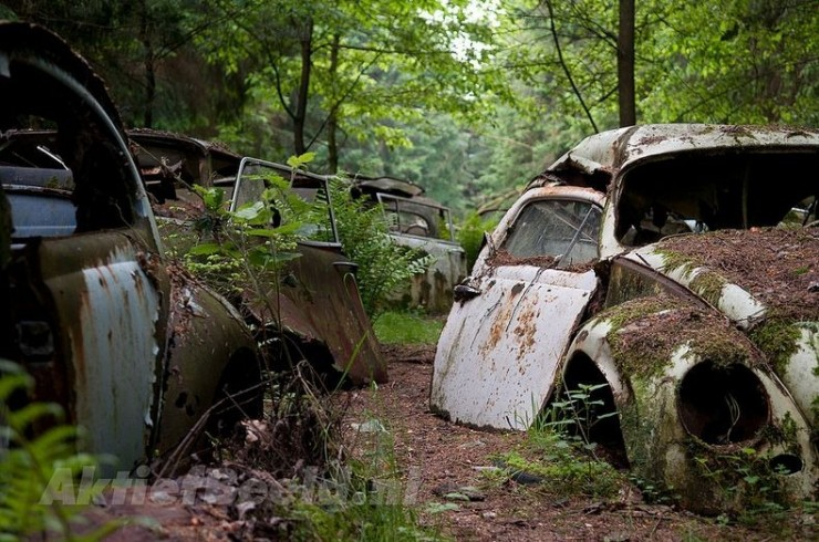 Photos From Abandoned Chatillon Car Graveyard - 09.