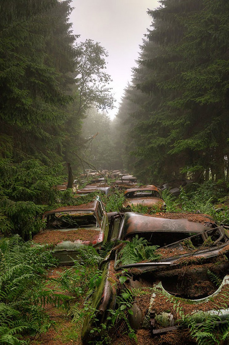 the chatillon forest car graveyard in belgium - 02.