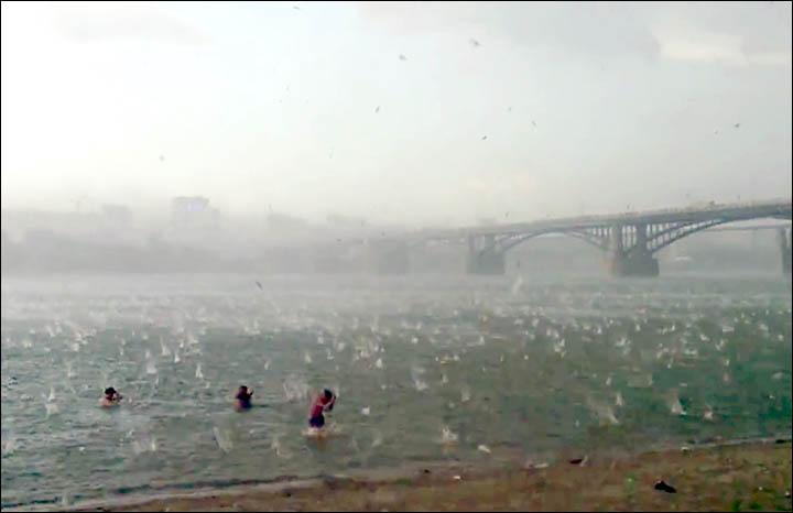 inside people in the water