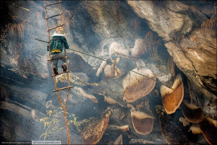 Mad Honey Hunters Of Nepal - 08.