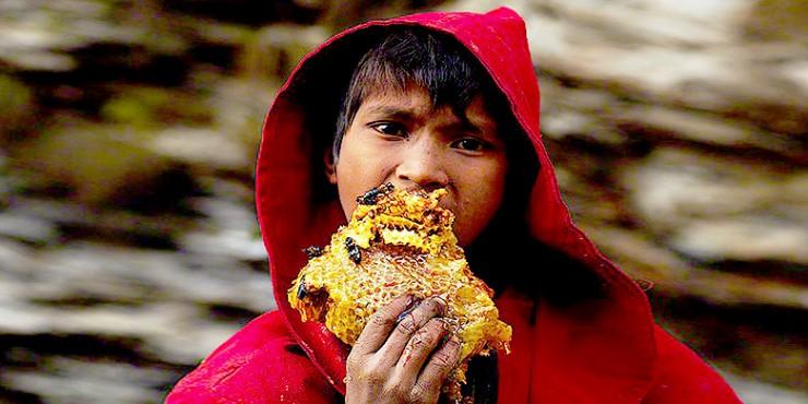 Mad Honey Hunters Of Nepal - 88.