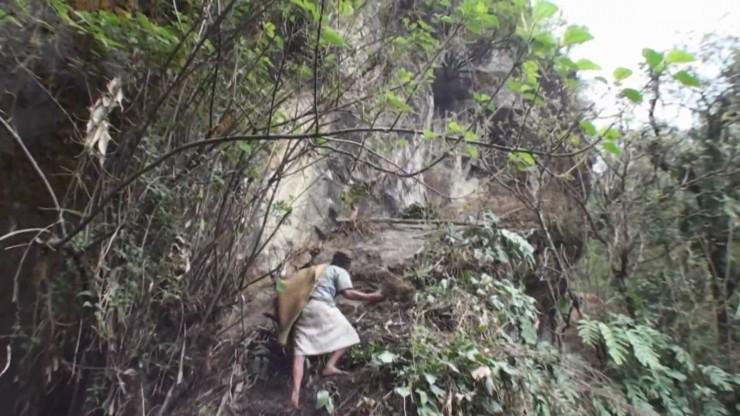 Mad Honey Hunters Of Nepal - 09.