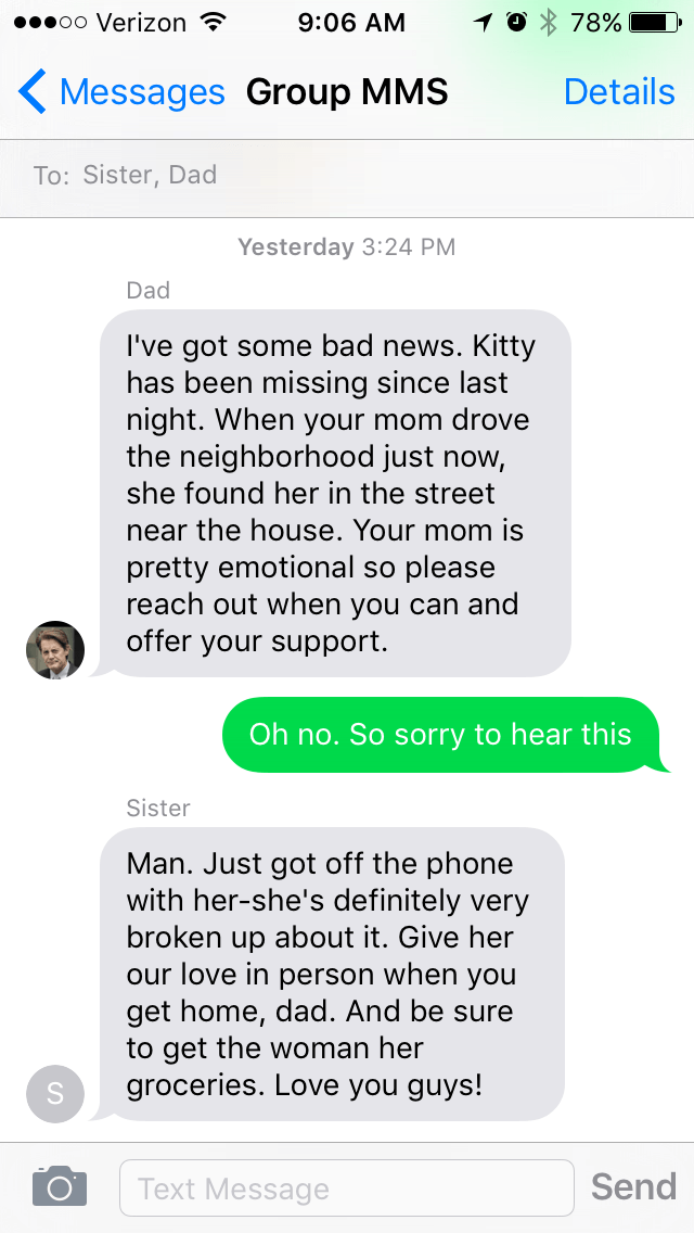 family-cat-goes-missing-story