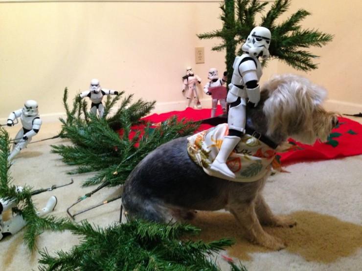 Star Wars Christmas 09.