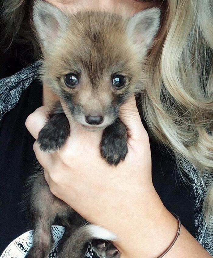juniper-fox-happiest-instagram-5