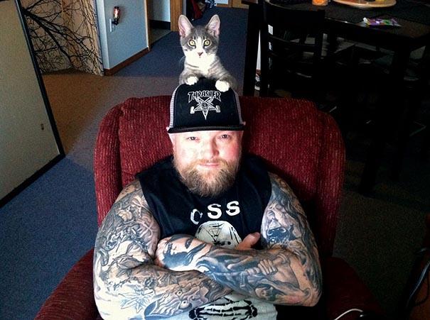 heavy metal cats 03.