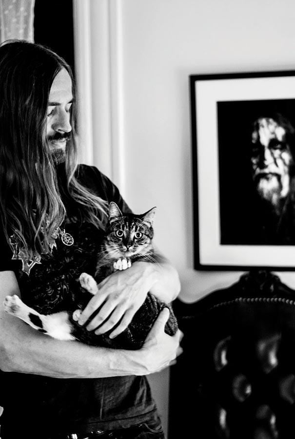 metal cats-alexandra crockett 4