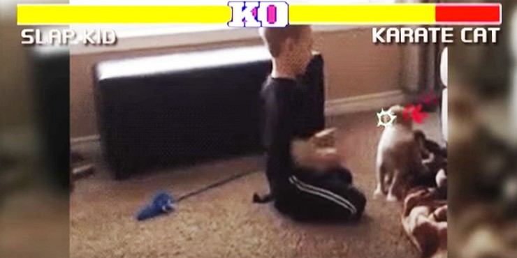street-fighter-cats-edition