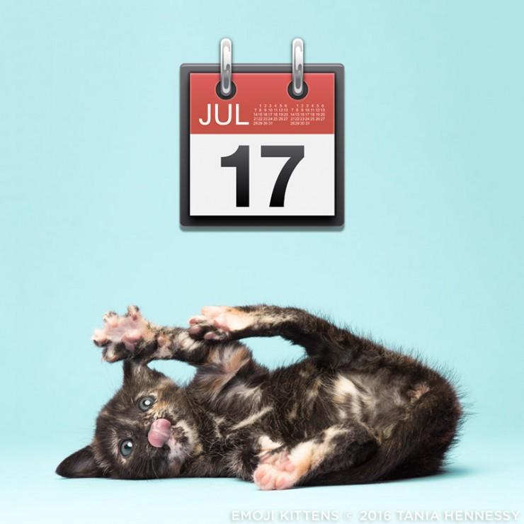 Emoji_Kittens_Tania_Hennessy_calendar__2016_Tania_Hennessy