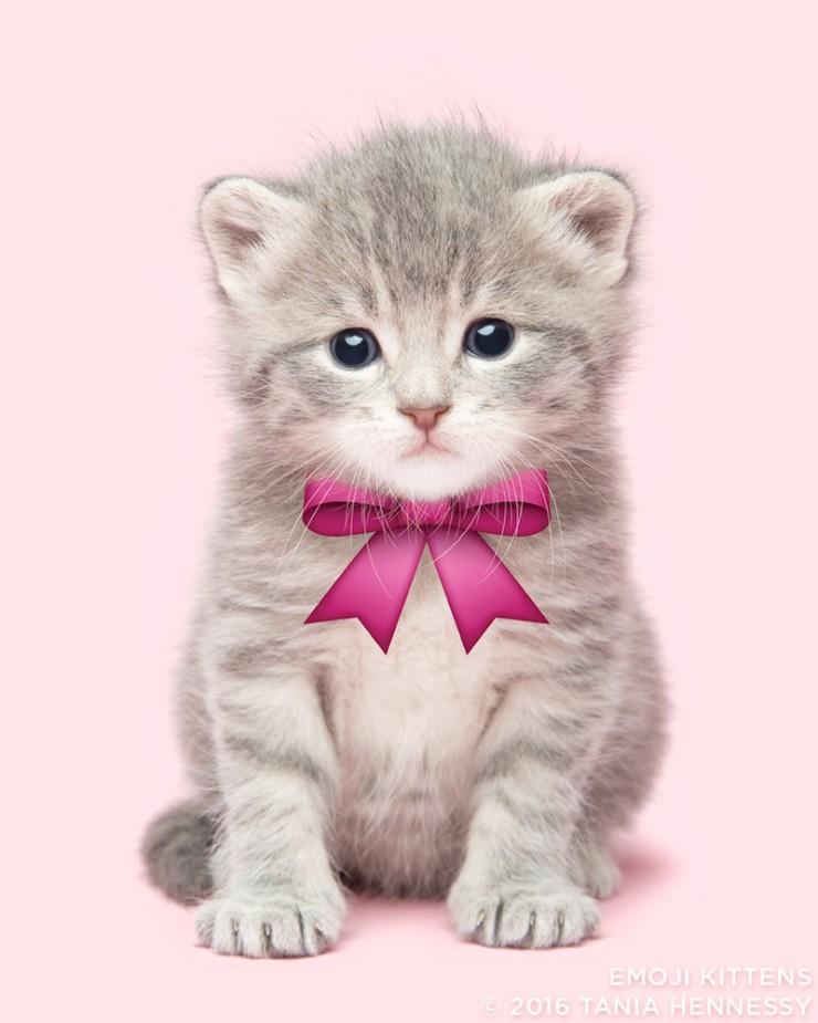 Emoji_Kittens_Tania_Hennessy_ribbon__2016_Tania_Hennessy