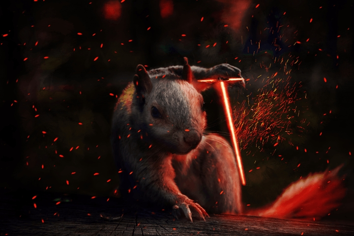 Badass Squirrel - 02