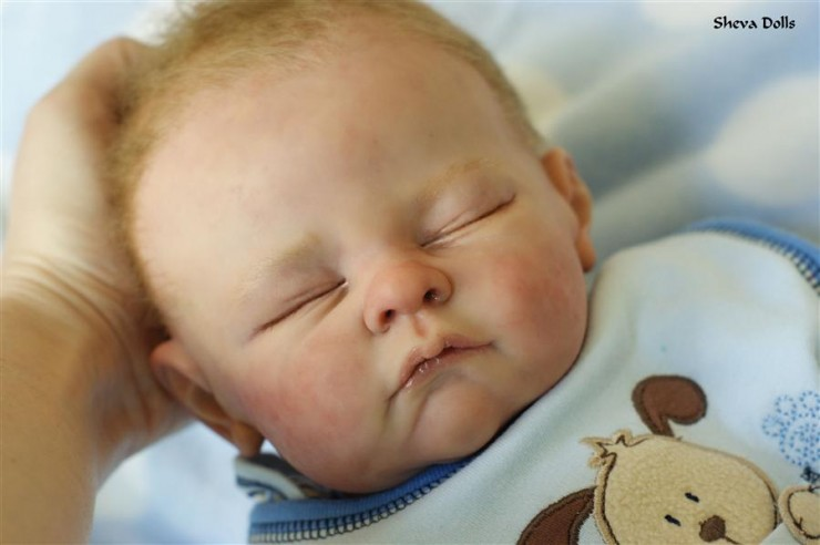 Reborn Dolls Amp People Obsessed With Silicone Babies