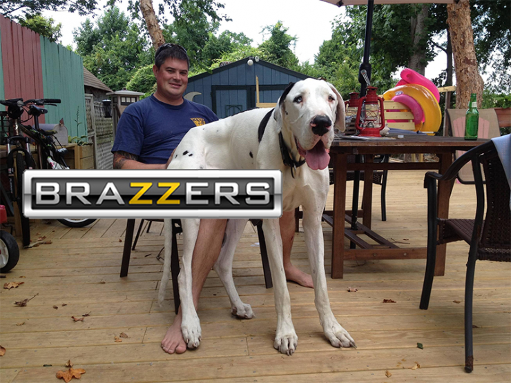 brazzers meme Big Dog.