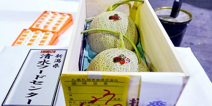 WTF Japan Seriously Yubari melons.