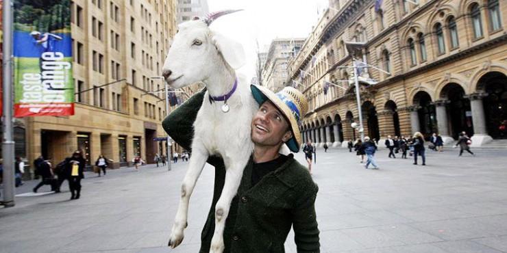 Gary The Goat 01.