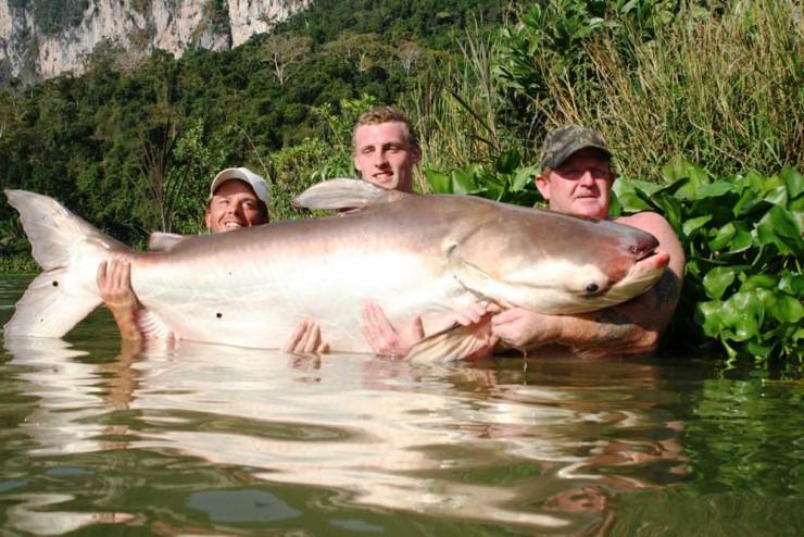 largest animals 05.
